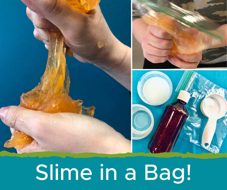 Slime in a Bag