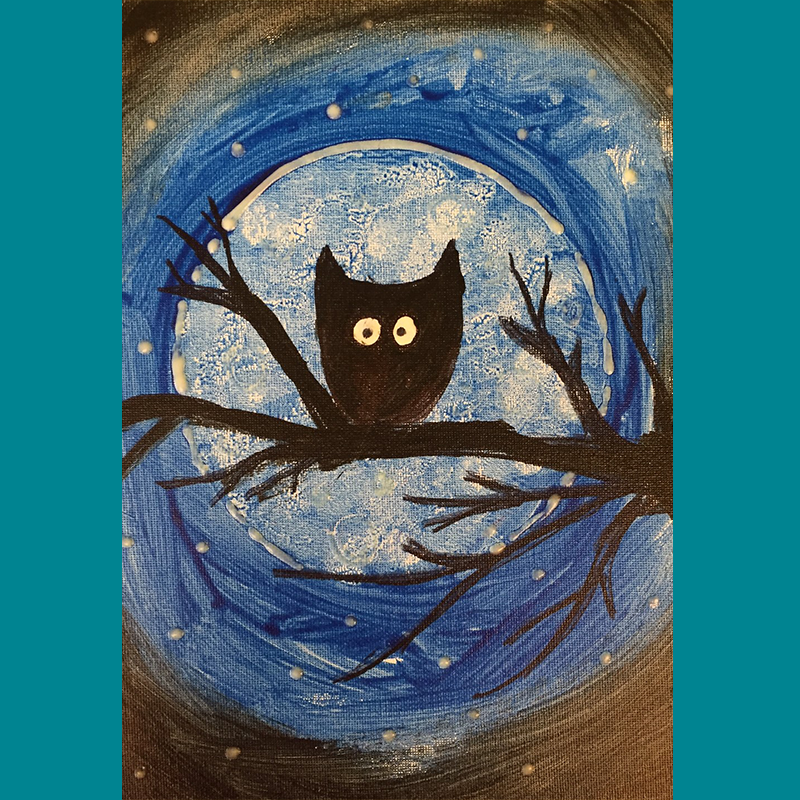 Kidcreate Studio, Glow-in-the-Dark Midnight Owl on Canvas Art Project